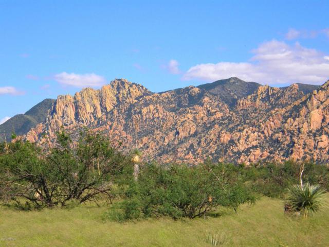 83 E Badger Trail #83, St. David, AZ 85630 (#21825727) :: Long Realty Company