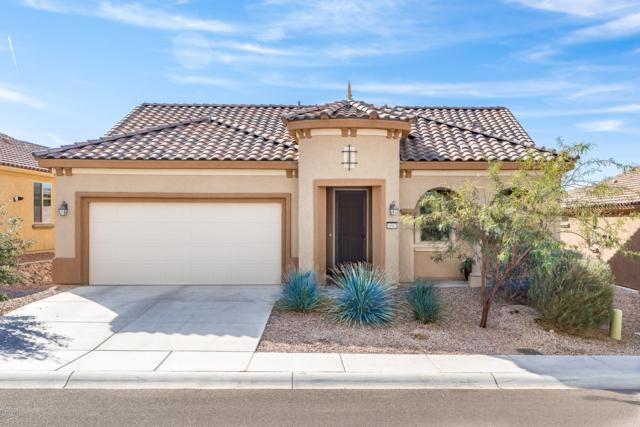 6597 W Grandview Trail, Marana, AZ 85658 (#21825815) :: Luxury Group - Realty Executives Tucson Elite