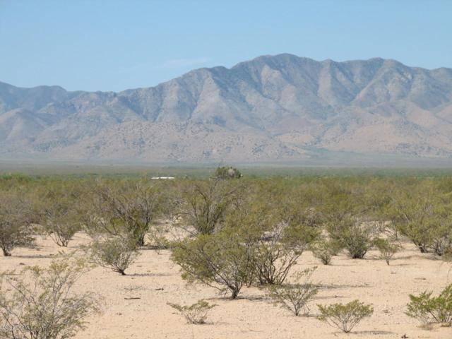 2641 W Bootjack Lane, San Simon, AZ 85632 (#21825879) :: eXp Realty