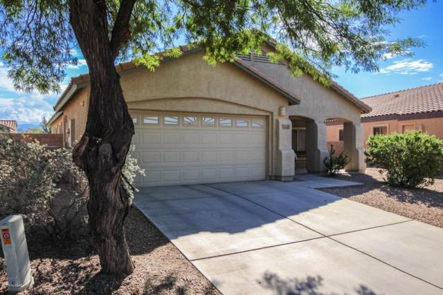 12228 N Sora Place, Marana, AZ 85653 (#21825955) :: The Josh Berkley Team