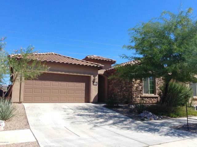 5571 S Sunrise Peak Road, Tucson, AZ 85747 (#21826215) :: The Josh Berkley Team