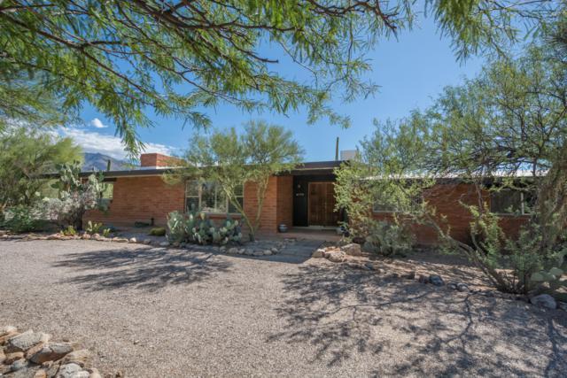 6530 N Camino De La Karina, Tucson, AZ 85718 (#21826235) :: The Josh Berkley Team