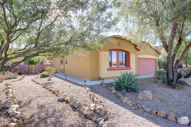 6365 S Iberia Avenue, Tucson, AZ 85757 (#21826259) :: Realty Executives Tucson Elite