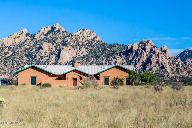 7989 E Horse Ranch Road, St. David, AZ 85630 (#21826311) :: Long Realty Company