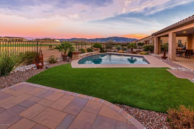31907 S Bighorn Drive, Oracle, AZ 85623 (#21826378) :: Gateway Partners at Realty Executives Tucson Elite