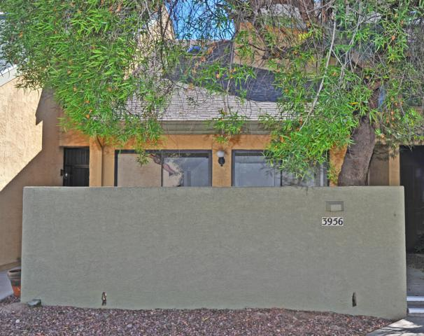 3956 N Paseo De Las Canchas, Tucson, AZ 85716 (#21826392) :: Long Realty - The Vallee Gold Team