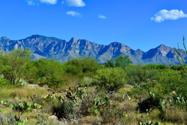 14071 N Old Forest Trail #122, Oro Valley, AZ 85755 (#21826500) :: The Josh Berkley Team