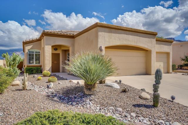 11900 N Labyrinth Drive, Oro Valley, AZ 85737 (#21826798) :: The Josh Berkley Team