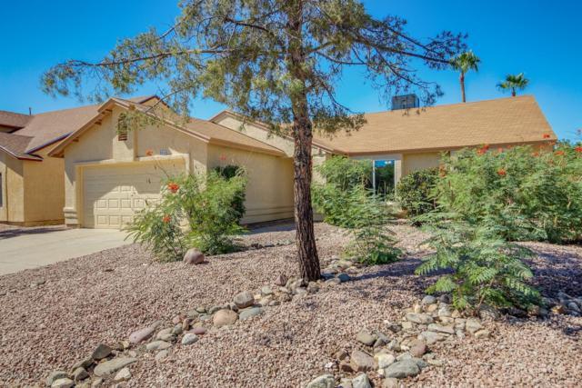 5060 W Pheasant Street, Tucson, AZ 85742 (#21826998) :: The KMS Team