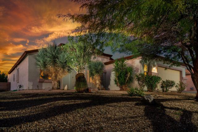 8402 W Calle Sancho Panza, Tucson, AZ 85757 (#21827055) :: RJ Homes Team