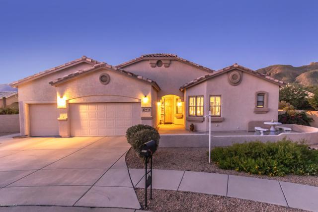 9973 E Woodland View Place, Tucson, AZ 85749 (#21827056) :: The Josh Berkley Team