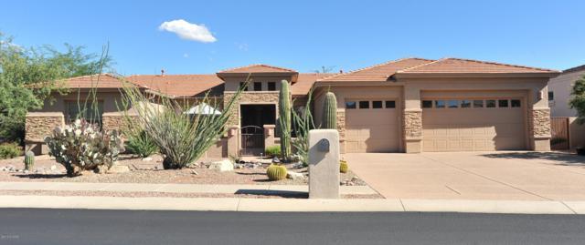 13832 N Javelina Springs Place, Oro Valley, AZ 85755 (#21827067) :: The Josh Berkley Team