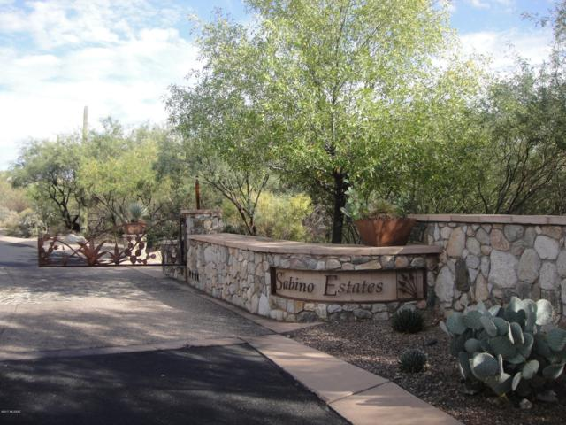 10255 E Sabino Estates Drive #45, Tucson, AZ 85749 (#21827175) :: Long Realty - The Vallee Gold Team