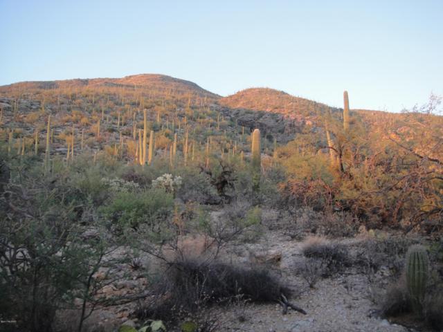10245 E Sabino Estates Drive 44&45, Tucson, AZ 85749 (#21827179) :: Long Realty - The Vallee Gold Team