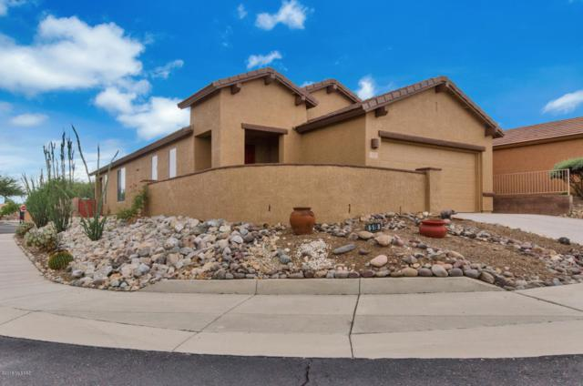 519 W Bazille Way, Green Valley, AZ 85614 (#21827267) :: RJ Homes Team