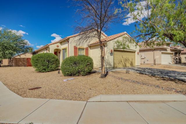 11384 W Harvester Drive, Marana, AZ 85653 (#21827287) :: The Josh Berkley Team
