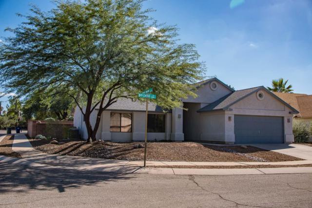 9170 E Bell Cactus Lane, Tucson, AZ 85715 (#21827291) :: The Josh Berkley Team