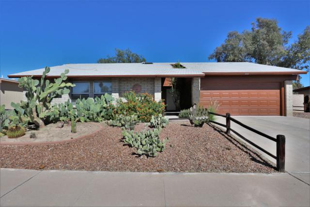 3420 W Peterson Place, Tucson, AZ 85741 (#21827436) :: The Josh Berkley Team