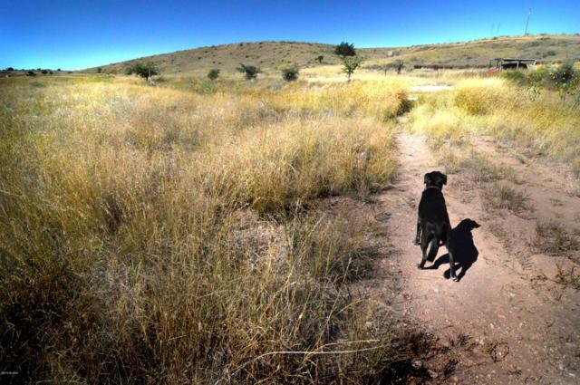 TBD Mustang Trail 4&5, Sonoita, AZ 85637 (#21827498) :: Long Realty Company