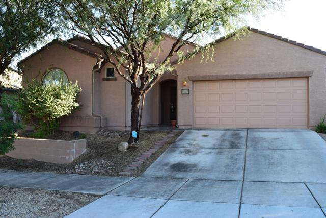 10730 E Orchid Cactus Lane, Tucson, AZ 85747 (#21827513) :: The Josh Berkley Team