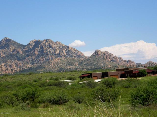 6851 E Horse Ranch Road, St. David, AZ 85630 (#21827515) :: Long Realty - The Vallee Gold Team