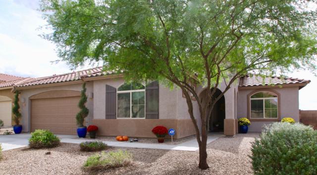 11353 W Smooth Pumice Street, Marana, AZ 85658 (#21827532) :: Long Realty Company