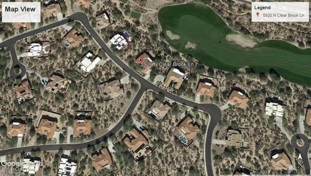 5920 N Clear Brook Lane, Marana, AZ 85658 (#21827629) :: Long Realty Company