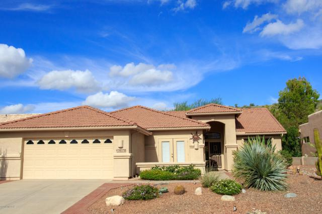 38370 S Skyline Drive, Tucson, AZ 85739 (#21827710) :: Gateway Partners at Realty Executives Tucson Elite