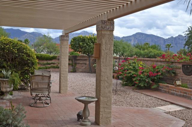 1056 E Coachwood Drive, Oro Valley, AZ 85755 (#21827739) :: Gateway Partners at Realty Executives Tucson Elite
