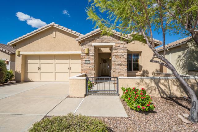 1136 W Versilia Drive, Tucson, AZ 85755 (#21827793) :: Keller Williams