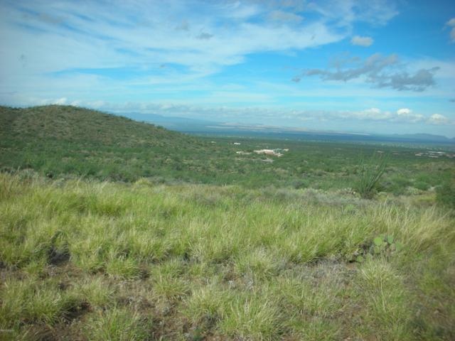 10600 E Ocotillo Rim Trail, Vail, AZ 85641 (#21827795) :: The KMS Team