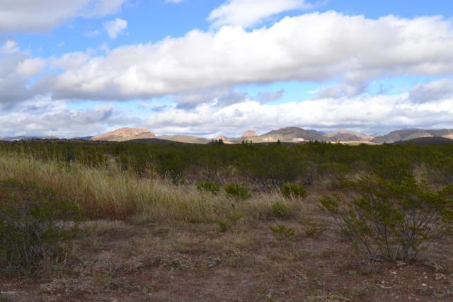 Tbd E Dry Branch (012A & 012B) Road #12, Douglas, AZ 85607 (#21827802) :: Keller Williams