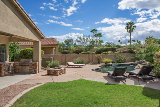 919 N Via Zahara Del Sol, Tucson, AZ 85748 (#21827814) :: The Josh Berkley Team