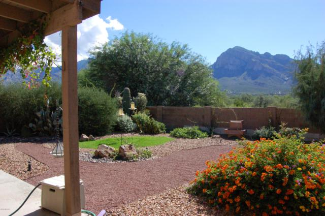 254 E Shore Cliff Place, Oro Valley, AZ 85737 (#21827836) :: Long Realty - The Vallee Gold Team