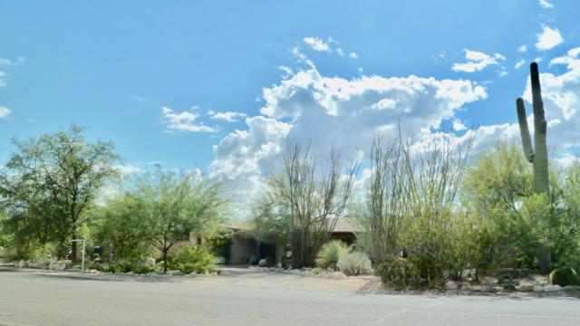 5655 N Genematas Drive, Tucson, AZ 85704 (#21827865) :: The KMS Team