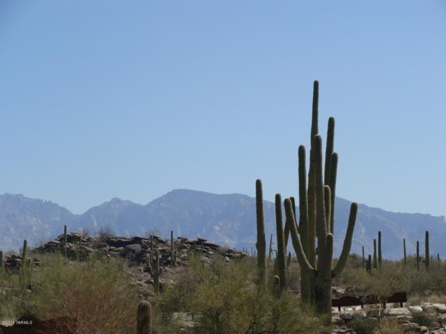 13516 N Pointed Rock Court #264, Marana, AZ 85658 (#21827867) :: The KMS Team