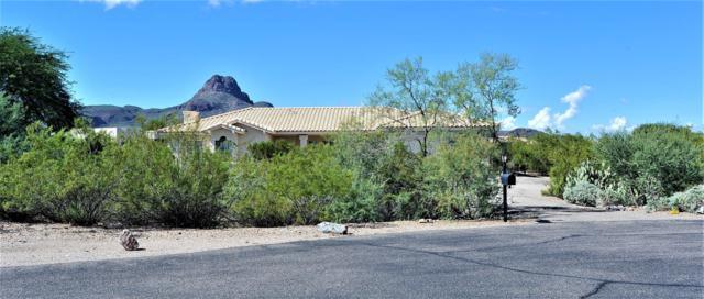 7951 N Wade Springs Drive, Tucson, AZ 85743 (#21827888) :: The Josh Berkley Team