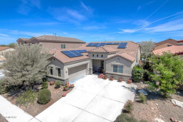 8294 W Canvasback Lane, Tucson, AZ 85757 (#21827894) :: The Josh Berkley Team