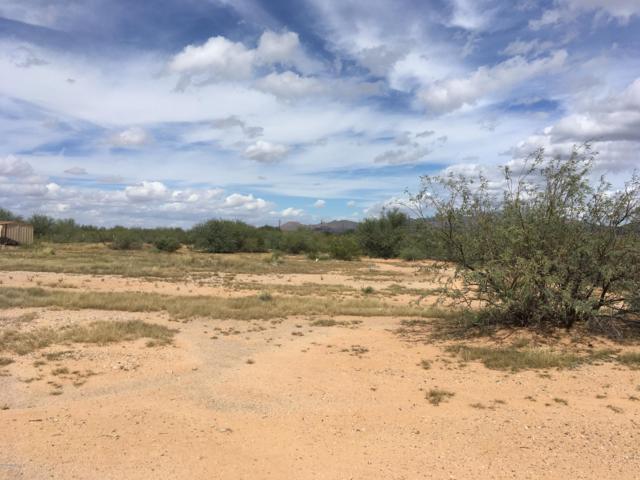 4559 S Desert Sunrise Trail, Tucson, AZ 85735 (#21827898) :: The Josh Berkley Team