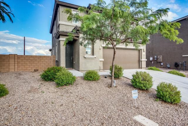 8079 S Dolphin Way, Tucson, AZ 85756 (#21827909) :: The Josh Berkley Team
