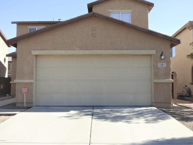 1061 W Sea Lion Drive, Tucson, AZ 85704 (#21827923) :: The KMS Team