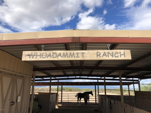 1587 W Dreamcatcher Way, Cochise, AZ 85606 (#21827943) :: Long Realty Company