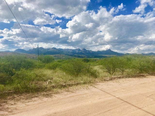 172 Camino Oceano 113/17, Rio Rico, AZ 85648 (#21827952) :: The Josh Berkley Team