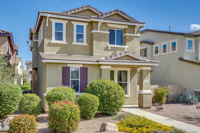 163 W Paseo Celestial, Sahuarita, AZ 85629 (#21827966) :: Gateway Partners at Realty Executives Tucson Elite