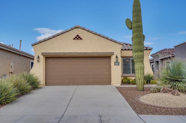 314 W Calle Montero, Sahuarita, AZ 85629 (#21828017) :: Realty Executives Tucson Elite