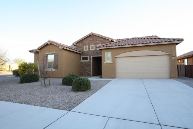 11343 W Smooth Pumice Street, Marana, AZ 85658 (#21828050) :: Gateway Partners at Realty Executives Tucson Elite