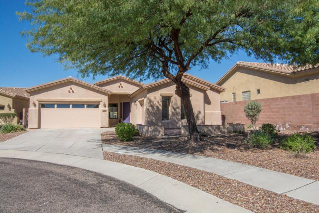 12841 N Cactus Terrace Place, Marana, AZ 85658 (#21828064) :: Gateway Partners at Realty Executives Tucson Elite