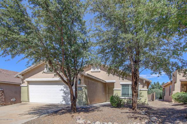9654 E Belasco Loop, Tucson, AZ 85748 (#21828116) :: Long Realty - The Vallee Gold Team