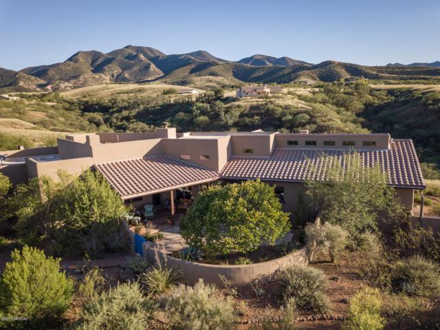 101 Red Mountain Court, Patagonia, AZ 85624 (#21828117) :: Long Realty - The Vallee Gold Team