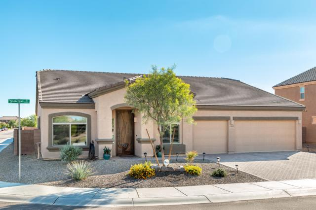 11045 W Snaketown Street, Marana, AZ 85658 (#21828150) :: Realty Executives Tucson Elite